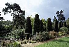 Hidcote Manor, Gardens - Gloucestershire, UK - 37576-10-1
