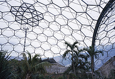 Eden Project, Bodelva, St Austell, Cornwall -Tropical biome - 9895-140-1
