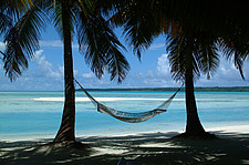 Hammock on tropical beach with palm trees - 10633-20-1