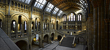 Interior of Natural History Museum, London - 13157-10-1