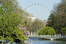 St James' Park Lake and the London Eye, London - 11529-420-1