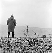 A man fishing on a shingle beach in Kent, with his fishing rod propped on a bare Christmas tree - 32375-2550-1