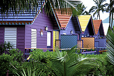 Colourful beach houses - 14698-90-1