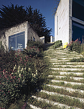 House at Creek Vean, Pill Creek , Cornwall (1964-6) The Planted steps leading up towards the entrance - 270-20-1