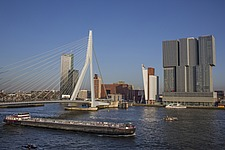 Cityscape of Rotterdam with De Rotterdam by Rem Koolhaas/OMA and Erasmusbrug bridge by architect Ben van Berkel - 16368-280-1