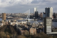 Cityscape of Rotterdam with De Rotterdam by Rem Koolhaas/OMA and Erasmusbrug bridge by architect Ben van Berkel - 16368-40-1