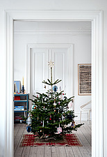 Christmas tree in white room - 16845-120