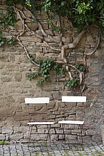 Monastery garden, wall in the monastery courtyard with garden chair and ivy, Drubeck, Saxony-Anhalt, Germany, Architects: Architects: Dr¸beck, Harz... - 40085-1620-1