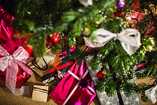 Christmas presents under tree in Chichester home, England, UK - 14877-50-1