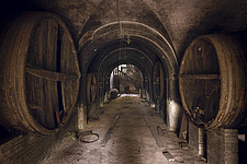 wine barrels in an abandoned cellar of a house in France - ARC101334