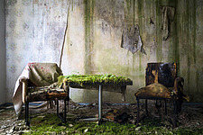Furniture in the rooms in an abandoned hotel in Germany, with plants or moss on the floor - ARC102847