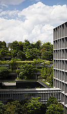 Winner of the World Architecture Festival Building of the Year 2018, Kampung Admiralty is a integrated public facility designed to create inter-genera... - ARC108720