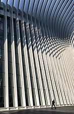 Oculus, World Trade Center station (PATH), Manhattan, New York, USA, completed in 2016 - ARC109582