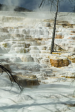 Hot springs, Geyser Basin, Yellowstone National Park, Wyoming, USA - 11488-250-1